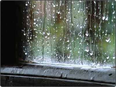 tarde lluviosa en la ventana